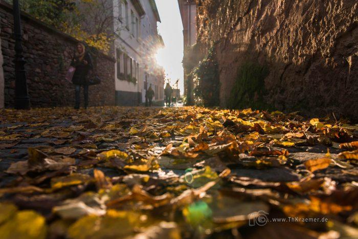 Aschaffenburgs Gassen im Herbstlaub